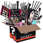 SHANY Gift Surprise All in One Makeup Bundle